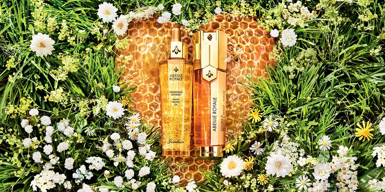 abeille royale fond herbe