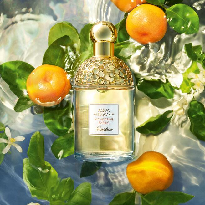 Mandarine Basilic set (See 3/3)