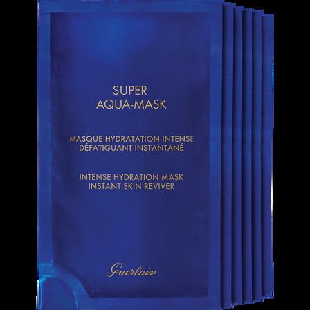 Masque Hydratation Intense (Voir 2/3)