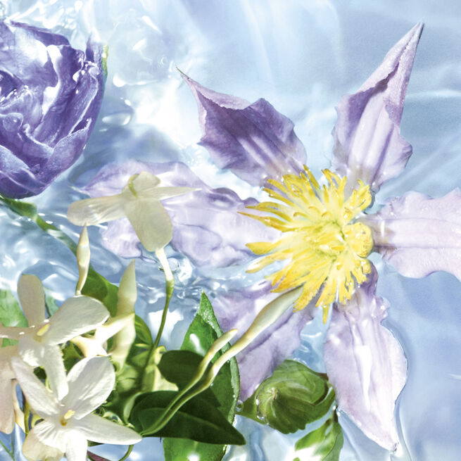 Flora Salvaggia -  Eau de Toilette (Voir 2/4)