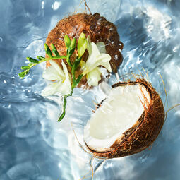 Coconut Fizz (See 2/5)
