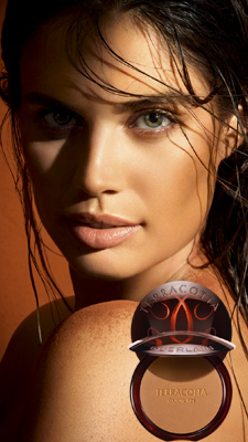 NEW - Terracotta The Natural Bronzing Powder